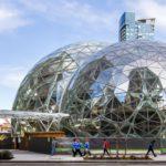 Amazon – wzorcowe imperium czy rekin pożerający konkurencję?